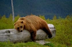 Alaska Trip 2012: Day1